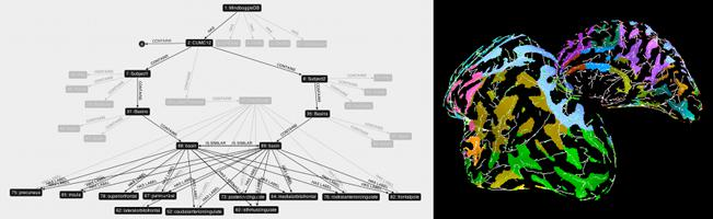 posters/Neuroinformatics2011_small.png